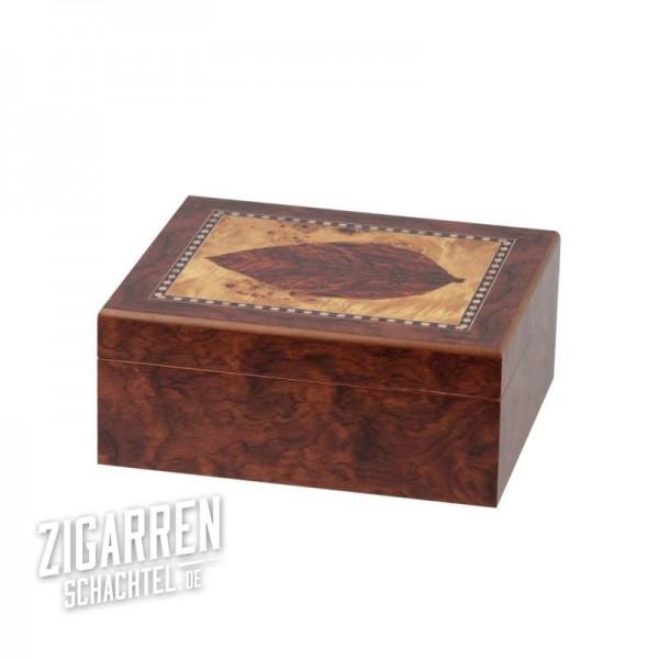 Humidor Dekor 'Blatt' für 25-30 Zigarren